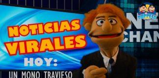 Noticias Virales: Un Mono Travieso