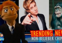 Trending News: Non-Belieber Chimps!